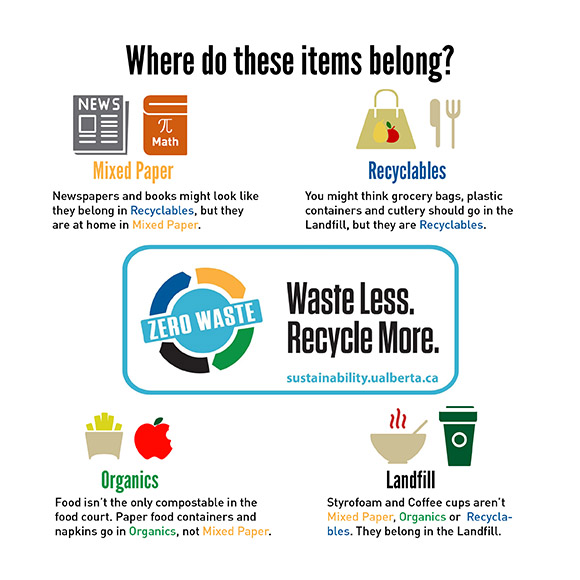 infographic - Waste Audit items final